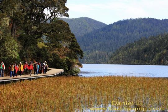 đi-bộ-trên-con-đường-lát-ván-quanh-hồ.