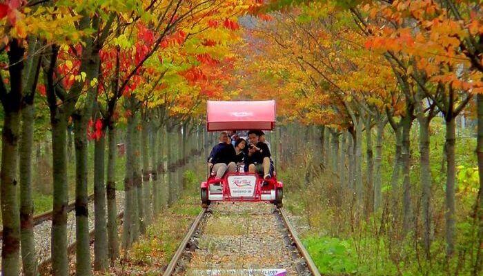 Gangchon-Rail-Bike-Park