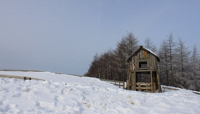 snowy-ranch
